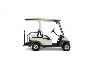carrito de golf para transporte de personas